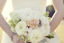 wedding planner / by Amanda Tromeur