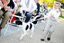 Puppy Love in Arkansas / You love your pets, so why not make them part of your big day? These Arkansas Brides did! / by Arkansas Bride Magazine