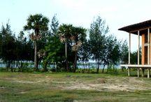 Farm House in Marakanam / Architecture on back waters of Marakanam, Tamilnadu