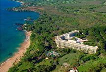 Teron+Derek's Maui Wedding / Makena Beach and Golf Resort ~ October '15