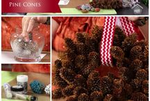 Pinecones / by Beth Lester