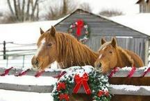 KarácsonyiLovak