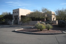 Cortaro Farms Pet Hospital / Our clinic is located at 3550 West Cortaro Farms Road, Tucson, Arizona.  Here are some pictures and information about our home base.