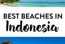 Sno bird's guide to Indonesia