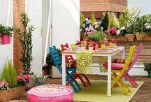 Plants - Terrace