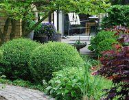 Garden and design