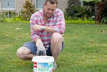 Our Lawn Care - Lilydale Instant lawn / Tips & Tricks to get your lawn looking better than ever!