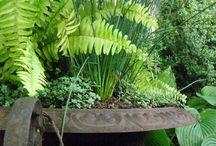 Garden Terrace & Tastings