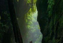 Nature my love