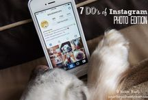 Dogs on Social Media / How to share your dog stuff successfully and in good taste. How about that as a goal! SEO for dog bloggers. Instagram hints. Whatever helps me might help you!
