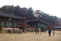 Korea, Tour / 야외활동