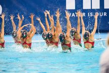 Synchro, Diving, Water Polo, and More