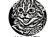 i fucking love cats