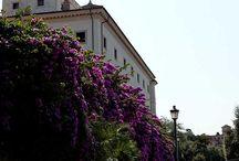 Rome juillet 2013 / Mon voyage à Rome en juillet 2013