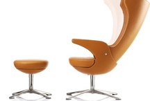Furniture & interior