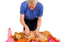 Natural Pet Care & Remedies