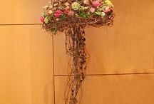 flowers\plants