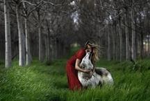 Shlomi Nissim Photographer
