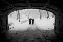 Central Park / by James Maher Photography