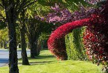 Happy Spring Days!!