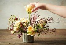 Wed Ding Flowers DIY / by Cynthia Dartley