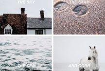 The Scorpio Races❤️