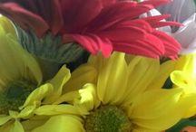 fleurs!