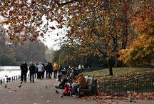 London Life / www.muchawsieci.com