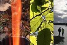 my work Autumn walk #hidden #cornwall #penwith #penzance #camera #photography
