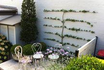 Trellis Garden Green Walls