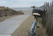 I♥ Bike