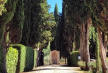 Tuscany dreaming  / Snapshots from one of the best regions in the world