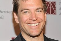 Michael Weatherly / Michael Weatherly, actor, movies, film, cinema, celebrity, Hollywood stars / by Emilia Kazasian
