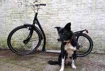 AmiGo footbike