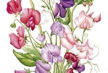 Silk painting ideas