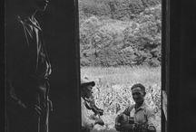 Bluegrass / by Carlotta Nelson Porcella