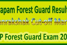 MP Forest Guard Results 2015