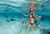 Caribbean Islands New Photos