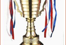 Metal Trophies / Trophykart manufactures and supply a wide range of Metal Trophies in the market. Visit us now to buy online metal trophy cups, cheap metal trophies and other at decent prices.