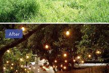 Bahçe / garden / Bahçe / garden