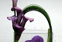 compo et bouquet