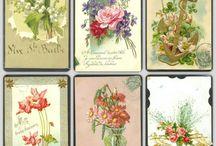 Bloemen knlpvel