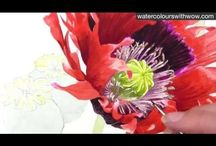 How-to's: Watercolor / by Wrenaissance Art