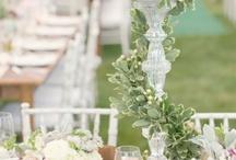 Wedding  / by Phyllis Taylor
