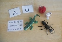 ABCs and 123s / by Jen @ Chestnut Grove Academy