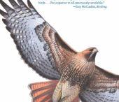 Essentail Bird Books