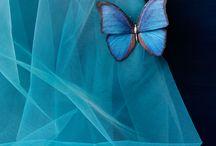 Colors(BRILLIANT BLUES)
