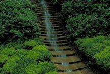 garden: water