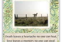 Horse Sympathy Cards / by Simple Sympathy