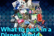 Disney World Vacay...